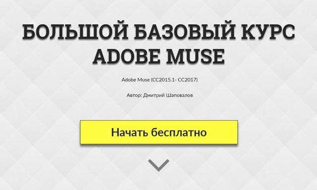 Базовый курс Adobe Muse для начинающих