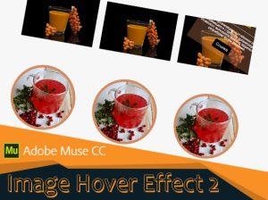 Image Hover Effect 2