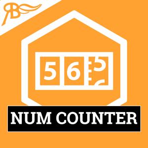 Счетчик-NumCounter